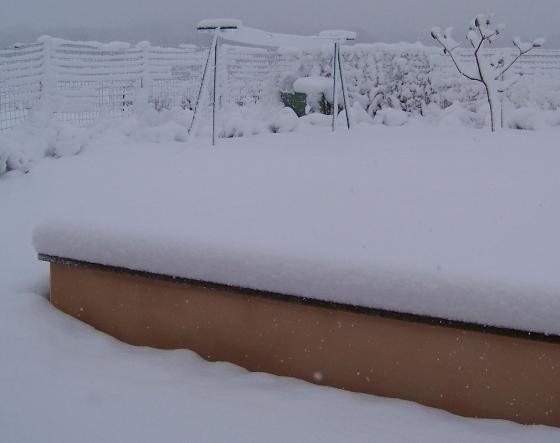 Cheapygirl_neige